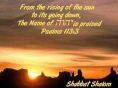 Psalms113