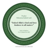 Indeed Allah is a kind an