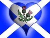 Scottish flag wiv thistle