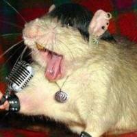 Singing rt