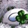 Gd luck teddy