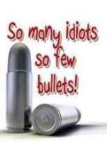 So many idiots so few bul