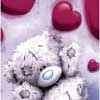 Teddy scarlet hearts