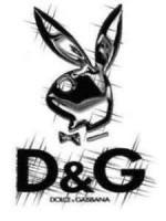 D&G playboy bunny
