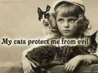 My cats protect me