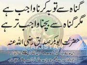 Islamic Info 4