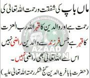 Islamic Info 7